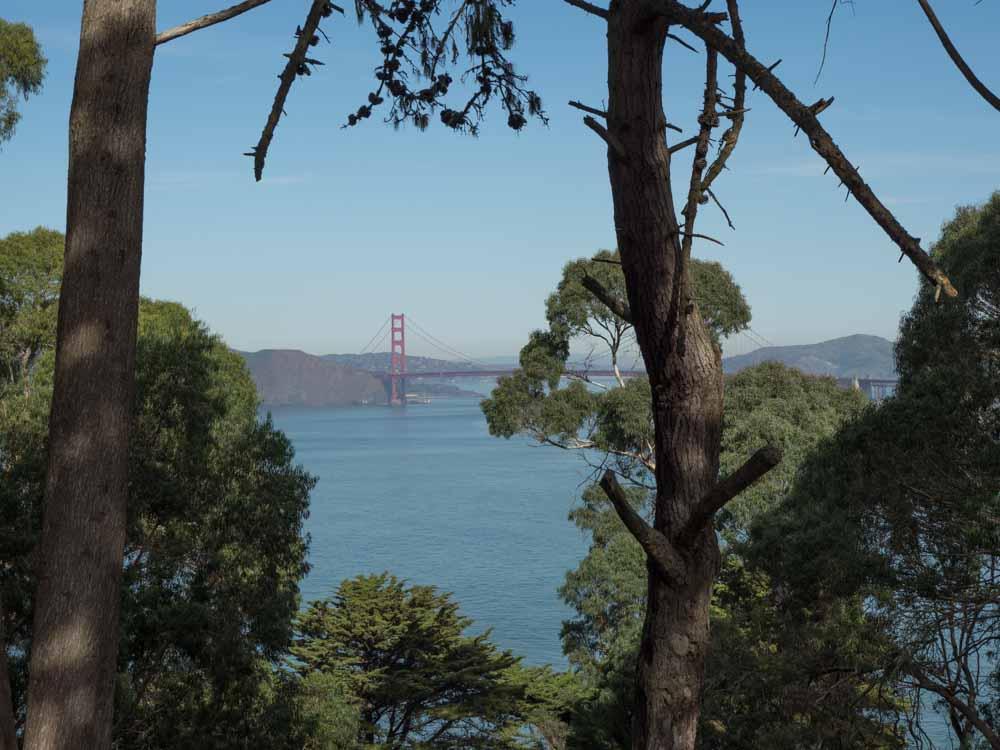 San Francisco Lands End Bridge View
