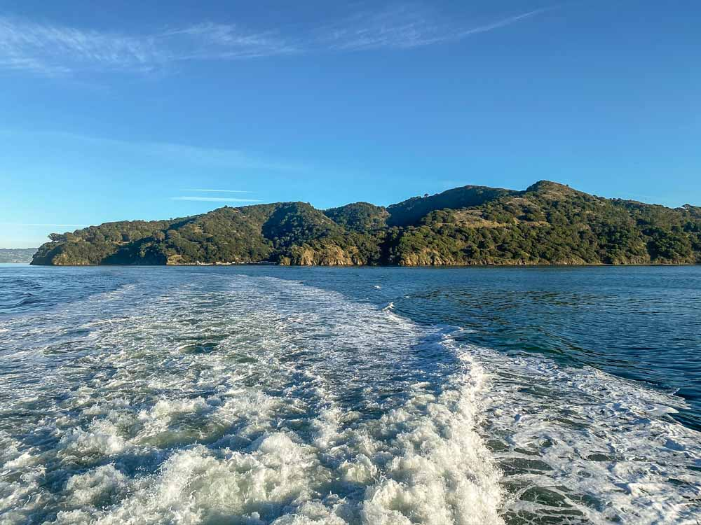 Angel Island things to do: view from the ferry. With churning water and green forest