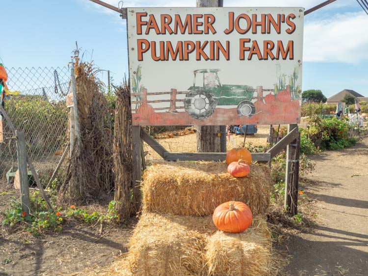 Half Moon Bay Farmer John's pumpkin farm