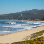 Half Moon Bay State Beach Park: Everything You Need to Know