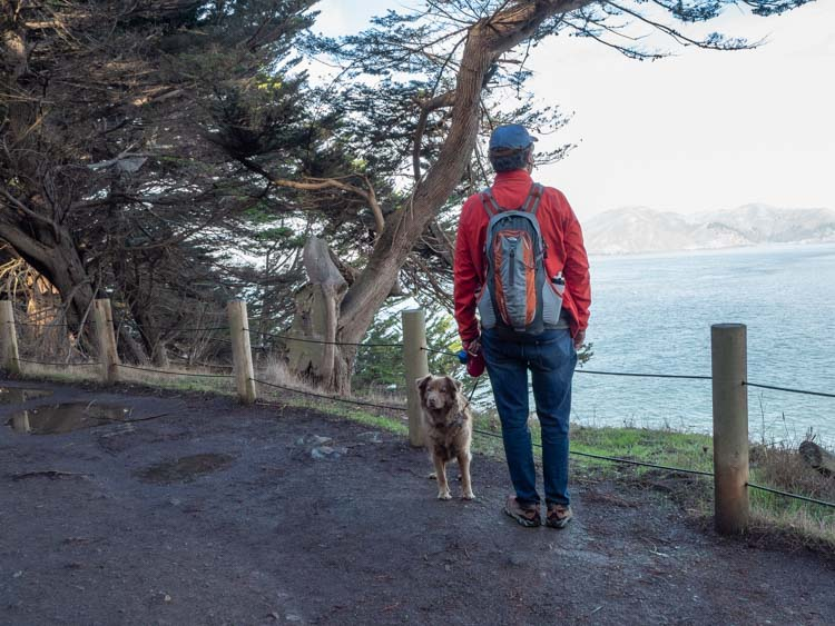 Lands End hiking with a dog. Man at overlook