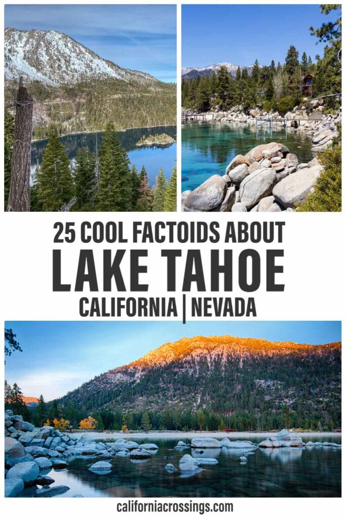 25 cool facts about Lake Tahoe California Nevada. Lake and pine trees