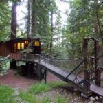 13 Woodsy Santa Cruz Tree Houses to Rent