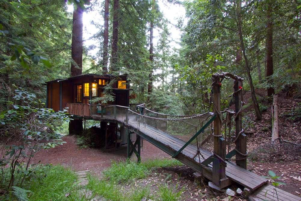 Santa Cruz redwood treehouse. cabin with walkway