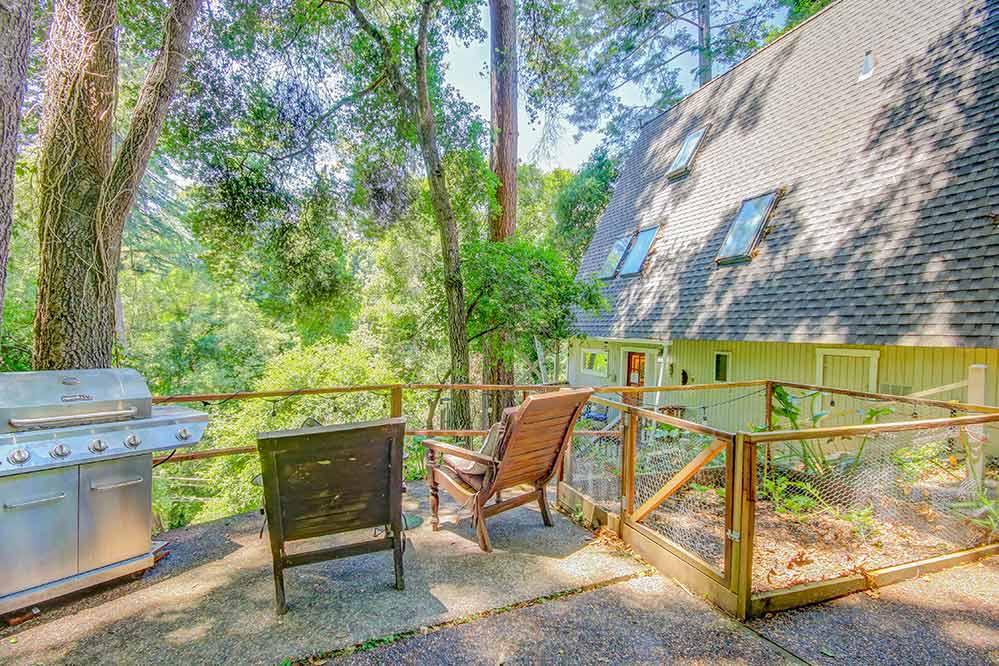 Tree top rental in Santa Cruz. Deck chairs in forest