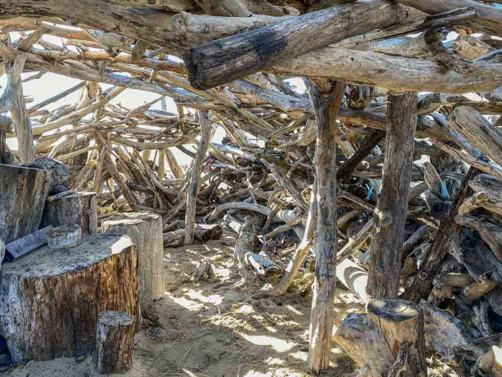 Pescadero beach marsh driftwood room