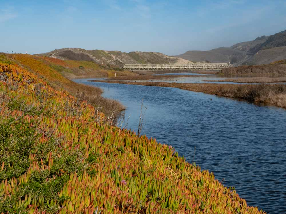 Pescadero marsh estuary and lagoon