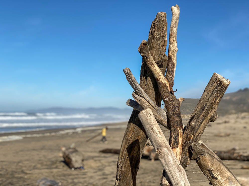 Pescadero driftwood pile on beach