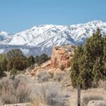 Your Highway 395 Road Trip Itinerary: Everything You Need to Plan a Trip