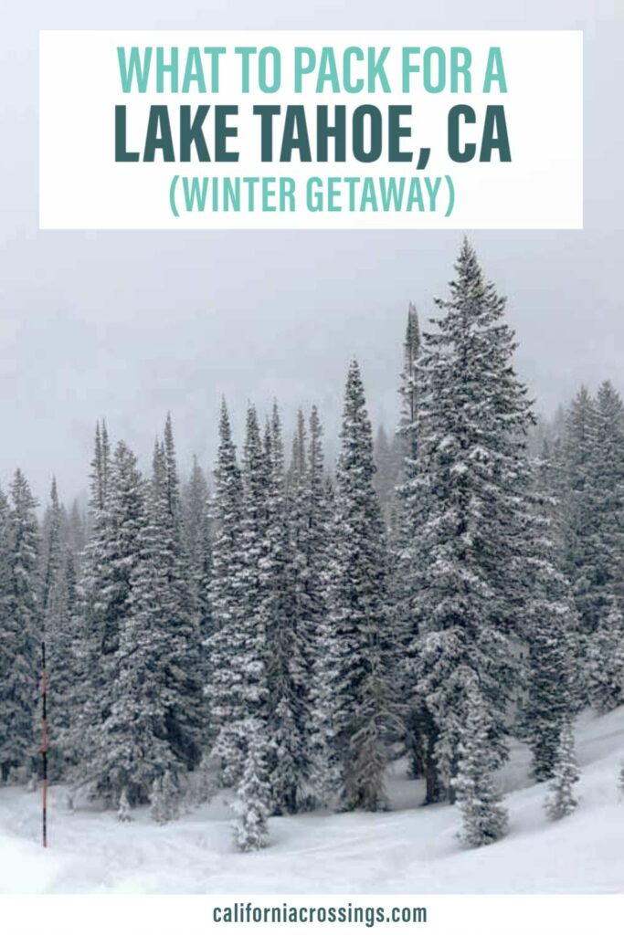 What to pack for Lake Tahoe in the winter- snow and pine trees