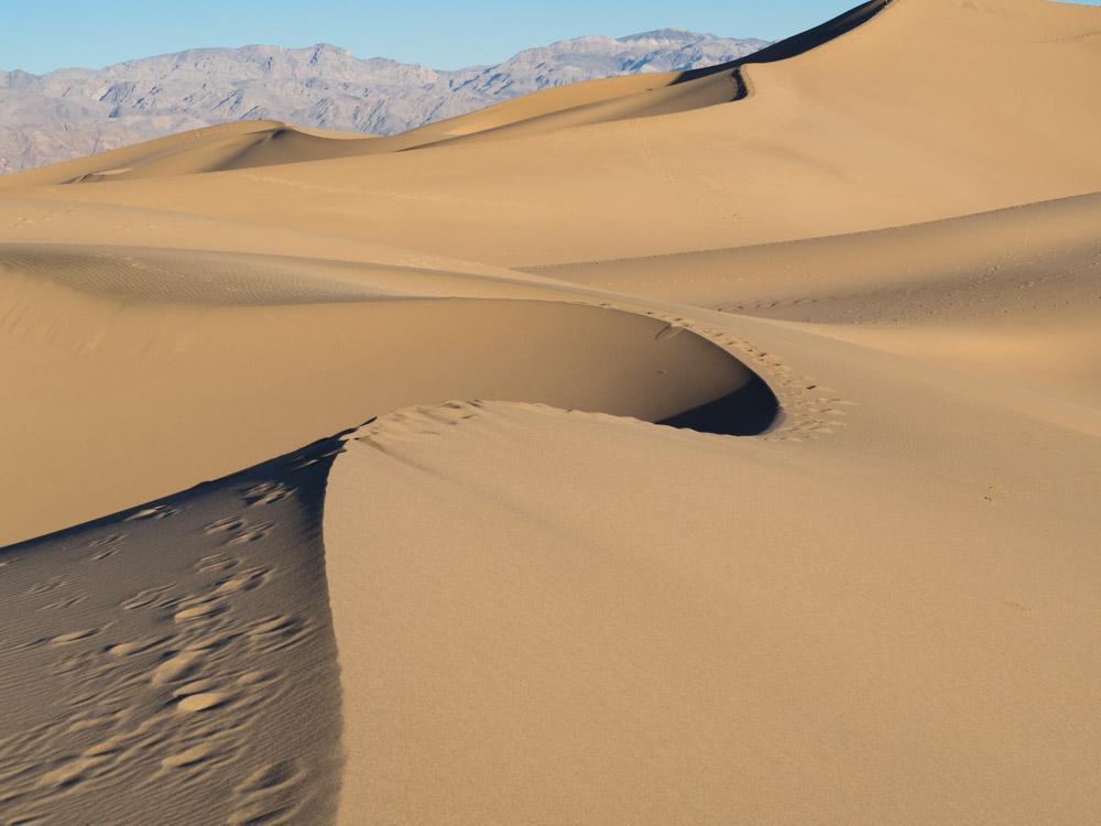 Death Valley trip- Mesquite Dunes at dawn. Sand dunes in shadow