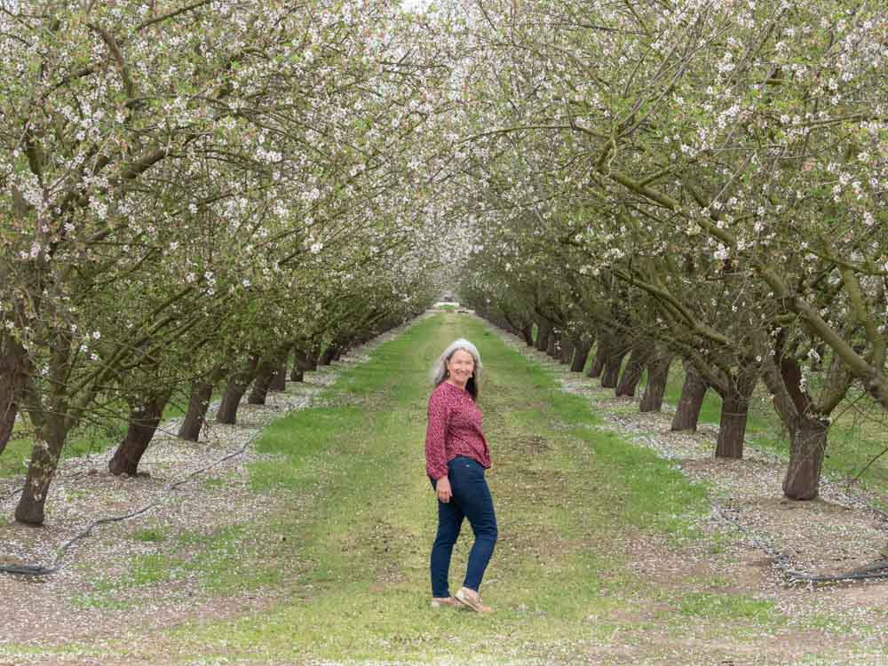Woman in blooming field of almond trees in California
