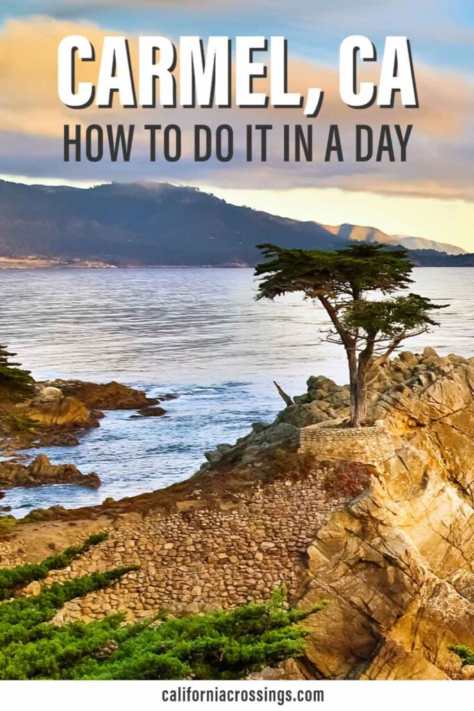 Carmel California day trip- how to do it in a day. ocean and cypress tree