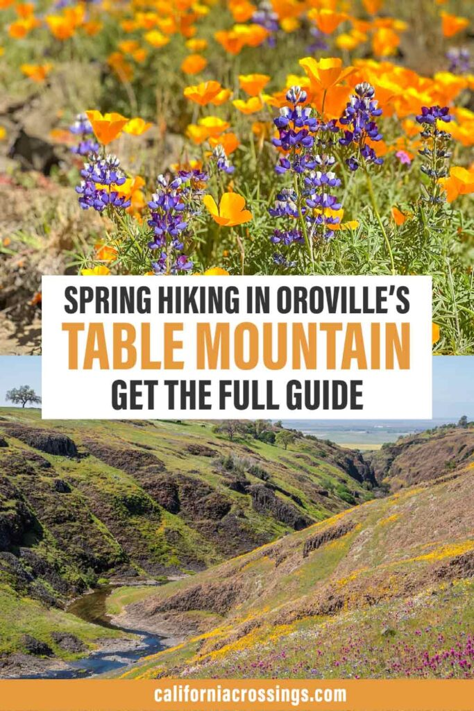 Spring hiking in Oroville's Table Mountain get the full guide