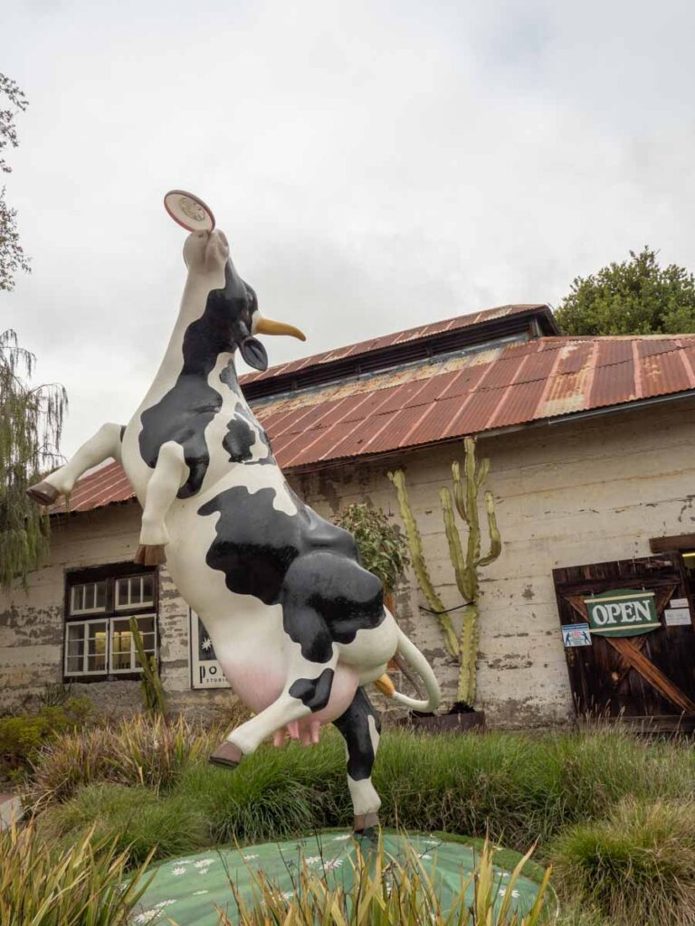 Harmony town's cow sculpture. Cow playing frisbee