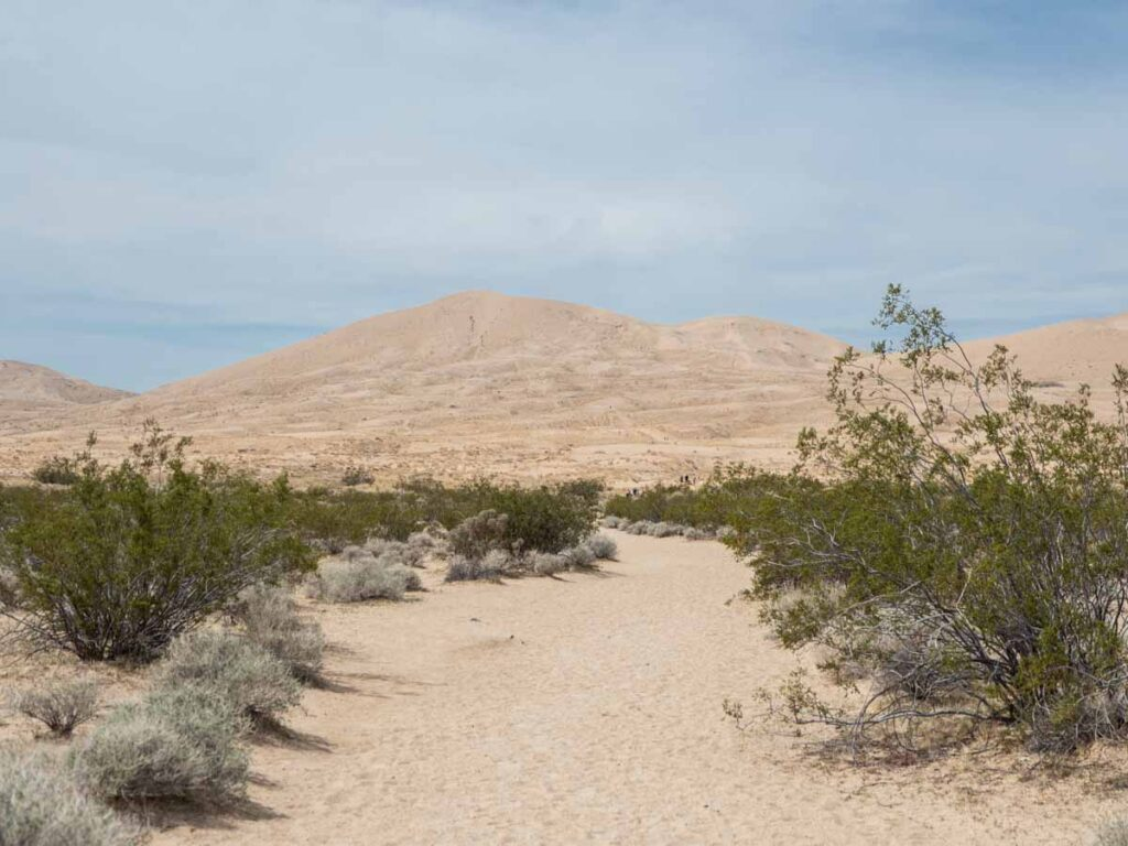 Mohave National Reserve Kelso Dunes