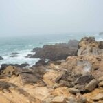 Salt Point State Park: Everything You Need to Know