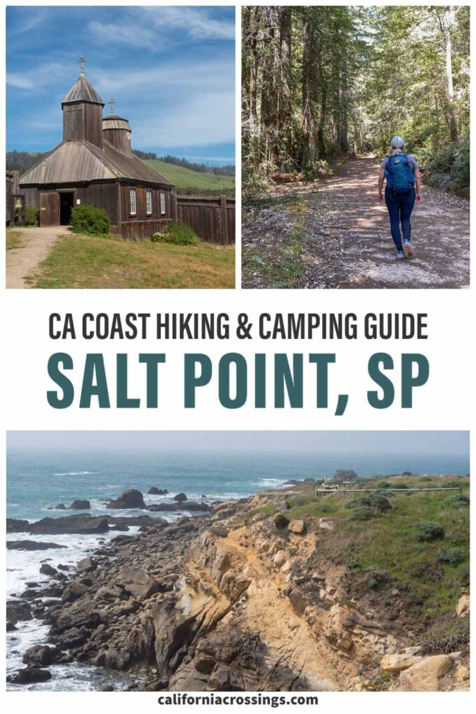 Salt Point State Park coastal hiking and camping guide