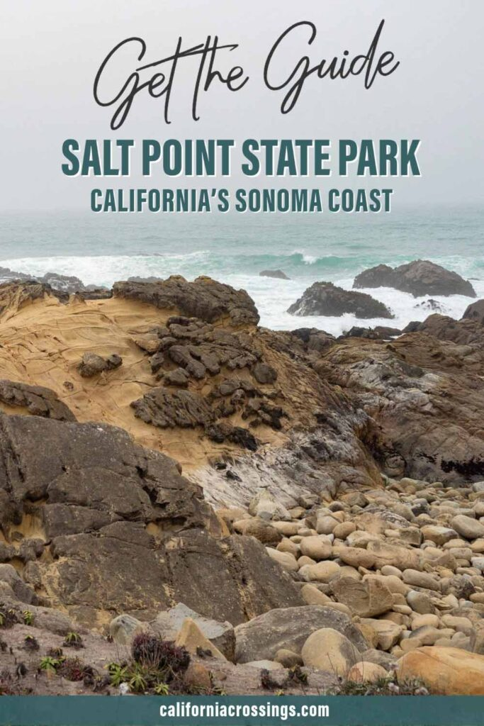 Salt Point State Park Sonoma County guide