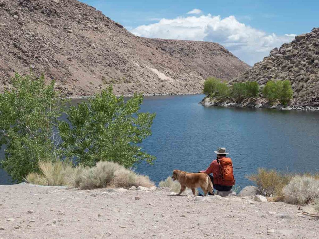 Pleasant Valley reservoir near Bishop CA. Man and dog at water