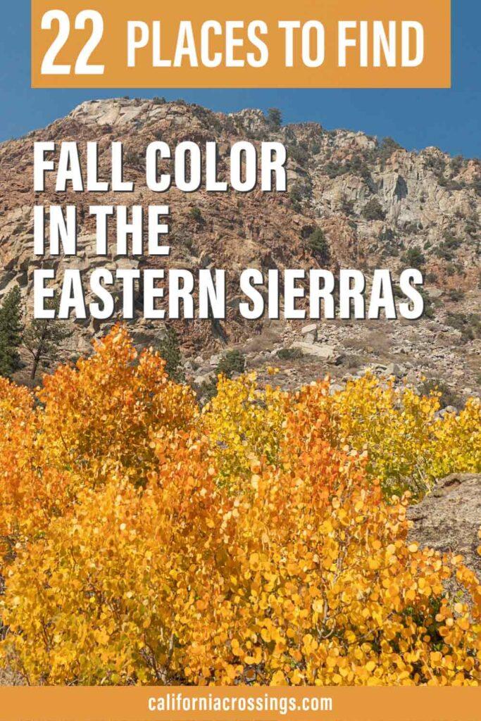 22 spots Fall Color in the Eastern Sierras