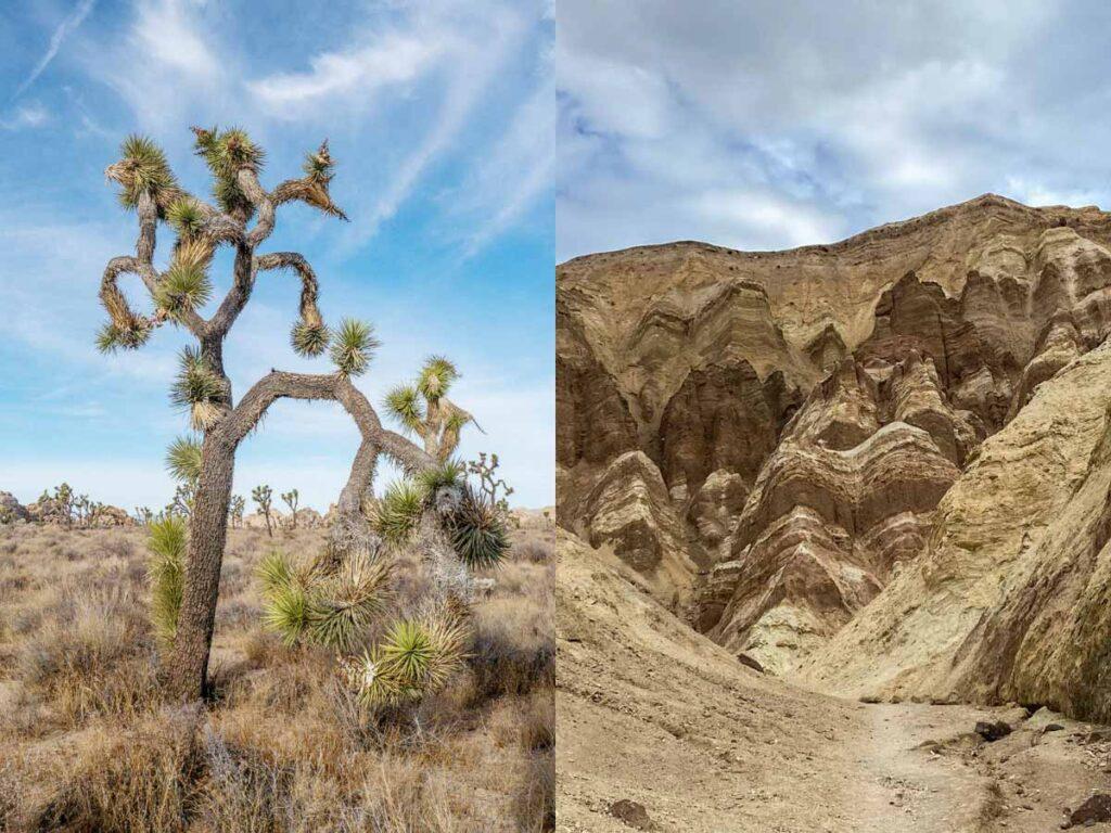 Joshua Tree to Death Valley (desert landscape)