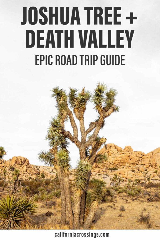 Joshua Tree to Death Valley epic road trip guide