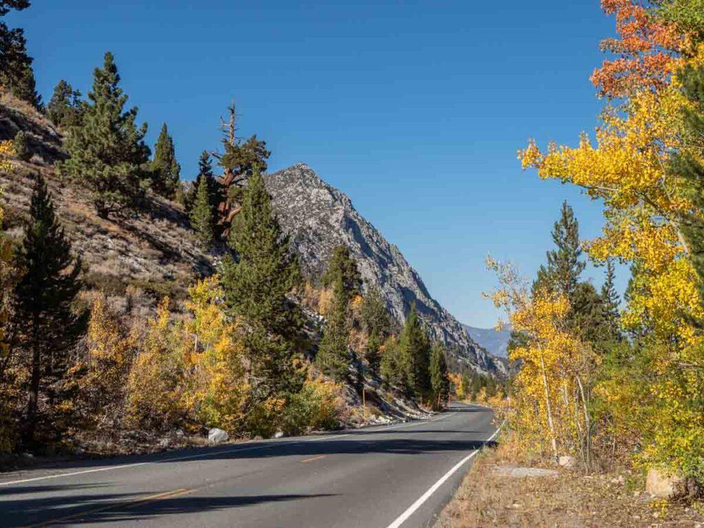 Rock Creek Canyon fall color